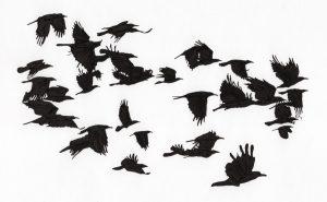 Rooks' Flight